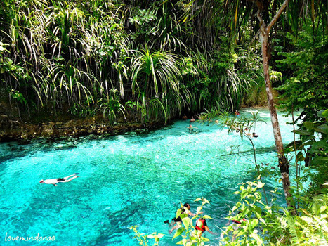 The Chronicles of Love Mindanao: Enchanted River of Hinatuan Surigao del Sur | Philippine Travel | Scoop.it