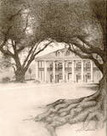 Stunning Pencil Drawing! | Oak Alley Plantation: Things to see! | Scoop.it