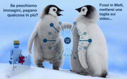 Come utilizzare le immagini per le tue campagne di link building - Motori di ricerca e SEO | Search Engine Optimization | Scoop.it