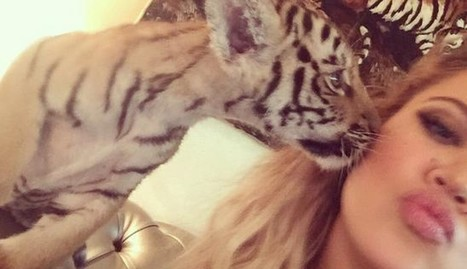 The Ugly Truth Behind Khloe Kardashian's Tiger Cub Selfie | Nature Animals humankind | Scoop.it