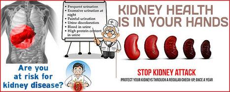 Kidney Disease: The Neglected Fatal Disease   Healthcare Methods   Scoop.it