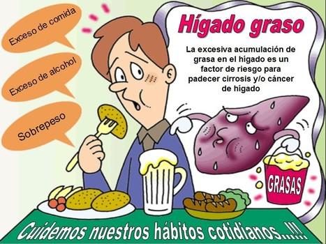 Medicina Natural para el Hígado Graso - Cómo curarlo | medicina. | Scoop.it