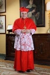 Cardinal Burke : « l'Église catholique n'approuvera jamais les unions homosexuelles », famillechretienne.fr | Foi, espérance et charité | Scoop.it