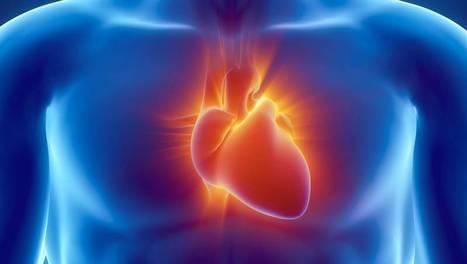 Une histoire de coeur | ARTE | 物質と記憶 matière et mémoire | Scoop.it