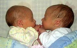 ¿Qué significa la clonación genética? Mitos y Realidades | daniela | Scoop.it