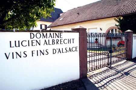 Alsace : Deux candidats à la reprise de Lucien Albrecht SA | Viticulture | Scoop.it