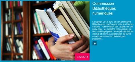 Commission Bibliothèques numériques : bilan 201... | Bibliothèque hybride | Scoop.it
