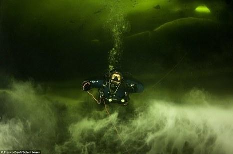 Scuba diver surveys sea beneath arctic ice - DVICE   DiverSync   Scoop.it