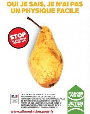 Pacte national de lutte contre le gaspillage alimentaire | Sustainable business expert, waste & recycling, sales & marketing | Scoop.it