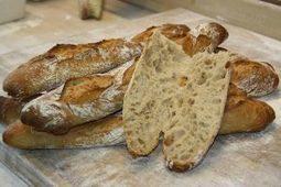 Les types de farine : késako? - Les Moulins d'Antoine | Boulangerie | Scoop.it
