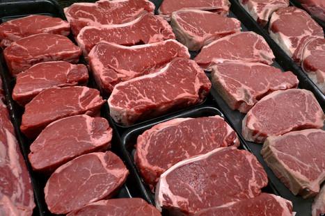 Slaughterhouse Investigation Reveals Nasty Beef Secrets | horse slaughter | Scoop.it