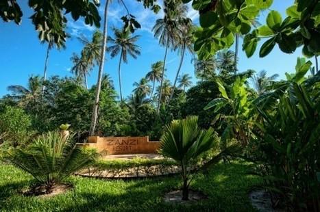 Enjoy some winter sun in tropical Zanzibar, Tanzania | Hotels in the World | Scoop.it
