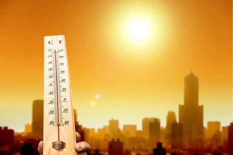 L'hiver 2015-2016 a été le plus chaud enregistré en France depuis 1900 | Acteurs de la transition énergétique | Scoop.it