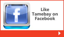 Ecommerce and delivery: current trends - TameBay | Social Business Analytics | Scoop.it