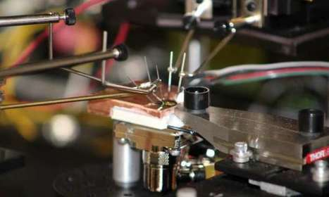 Innovations from the wild world of optics and photonics   Era del conocimiento   Scoop.it