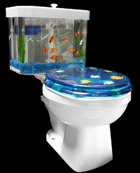 Most Stylish and Futuristic Home Aquariums ~ Digital High Street   Ornamental Aquatics   Scoop.it