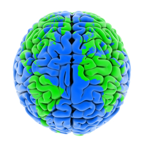 The Global Brain | Global Brain | Scoop.it