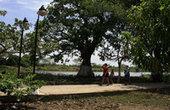Mompox, un pueblo andaluz en el Magdalena colombiano - El Nuevo Herald   Historia de Colombia colonial   Scoop.it