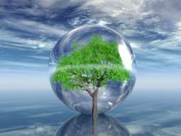 Bilan francophone de la décennie de l'éducation au développement durable - CENTRE FRANCOPHONE VIRTUEL EN ÉDUCATION AU DÉVELOPPEMENT DURABLE | Environnement et développement durable, mode de vie soutenable | Scoop.it