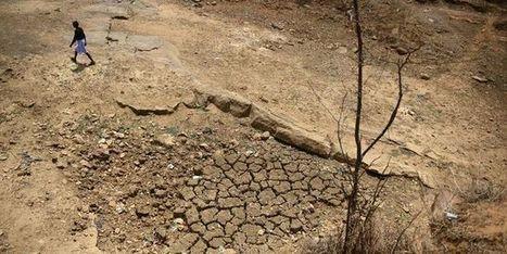Inde : un quart de la population est touché par une grave sécheresse | Nature to Share | Scoop.it