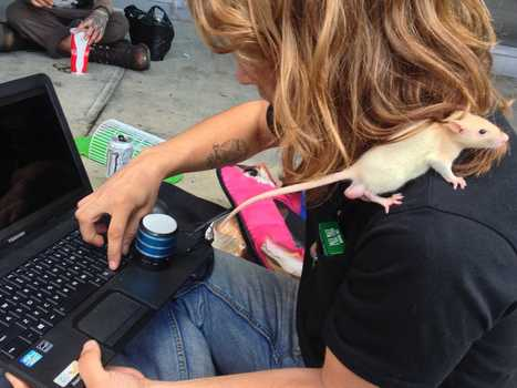 How Homeless People Use Technology: A Photo Essay On Street Poverty And Consumer Gadgets | Geek | Scoop.it