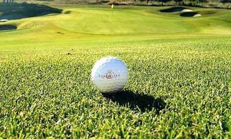 El arma secreta del golf para los juegos Olímpicos de 2016: Zeon Zoysia | Golf | Scoop.it
