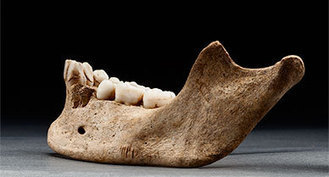 Starving Settlers in Jamestown Colony Resorted to Cannibalism   US History   Scoop.it