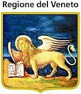 Assegno di Cura regionale per Non Autosufficienti 2012 | Veneto Accessibile | Scoop.it