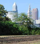 Green Infrastructure Is Becoming Mainstream | Conservation, Ecology, Environment and Green News | Scoop.it