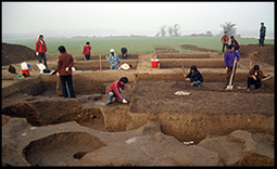 Zhang Chi and Hsiao-chun Hung - Jiahu 1: earliest farmers beyond the Yangtze River | Rice origins and cultural history | Scoop.it