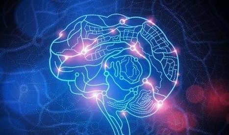 Apprendre une nouvelle langue modifie le cerveau [www.passionsante.be] | Sciences cognitives | Scoop.it