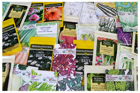 How to Decode Your Seed Catalog | Food issues | Scoop.it