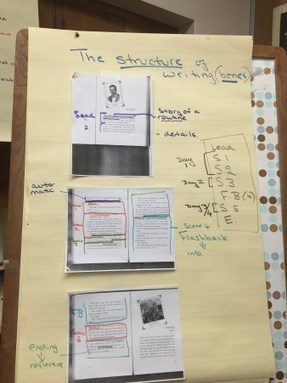 Notes #TCRWP workshop w/Carl Anderson - Writing With Mentor Texts | Leaves | Scoop.it