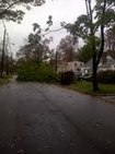 Social Media and the aftermath of Hurricane Sandy | Small Business Scoops | AAPA | Scoop.it