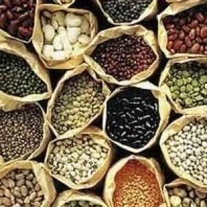 Aditivos de origenanimal. Listado de aditivos de origen animal y los de posible origen animal   All About Food   Scoop.it
