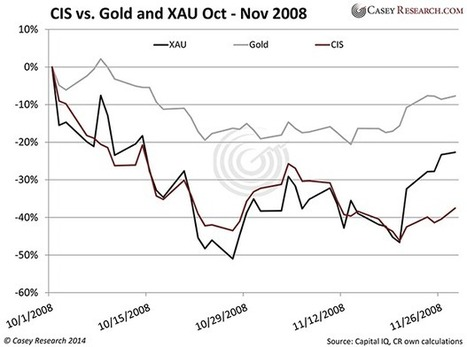 Doug Casey's Coming Super-Bubble   Louis James   Safehaven.com   Gold and What Moves it.   Scoop.it