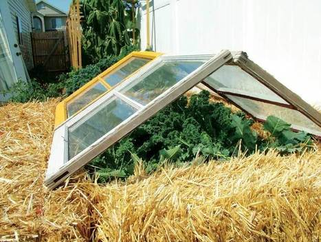 Make a Cold Frame for Herbs | Gardening | Scoop.it