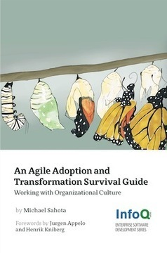 Transformation Case Study Highlights | Agile Methods | Scoop.it