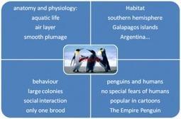 Le mind-mapping ou carte mentale pour apprendre et mémoriser l'anglais | Devenir Bilingue Anglais | Le meilleur de vous | Scoop.it