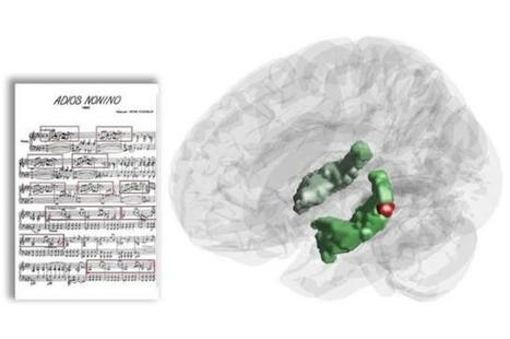 Hippocampal activity during music listening exposes the memory-boosting power of music | neuroscientistnews.com | With My Right Brain | Scoop.it
