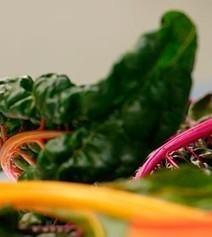 Acelgas frescas a la buena presencia, un plato pletórico de salud | Alimentos | Scoop.it