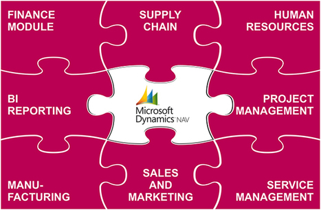 Quality Control for Microsoft Dynamics NAV (Navision) | Lean Six Sigma and Information Technology | Scoop.it