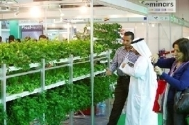 Farmers urged to grow crops on the roof - The National | Vertical Farm - Food Factory | Scoop.it