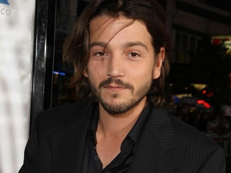 Oh No They Didn't! - Diego Luna talks about US immigration and his ... | Hispanic Immigration | Scoop.it