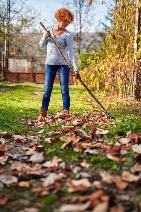 Fall Cleanup: Avoid Urgent Care Clinics with These Simple Raking Tips | US HealthWorks Tukwila | Scoop.it