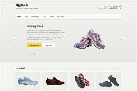 Agora is a eCommerce WordPress Theme by cssigniter.com | WP Daily Themes | wp e-commerce | Scoop.it