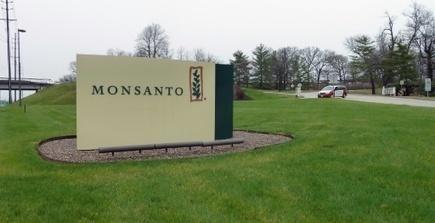 Monsanto reçoit l'agrément européen pour du soja OGM   On n'arrête pas le progrès !   Scoop.it