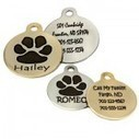 The Importance of Dog ID Tags | SF-Insurance | Scoop.it