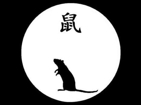 Horóscopo chino: Conozca a los 12 animales de la astrología china - Radio Programas del Perú | web astrologia | Scoop.it