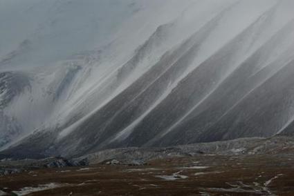 Wild yaks: Shaggy barometers of climate change | GarryRogers Biosphere News | Scoop.it